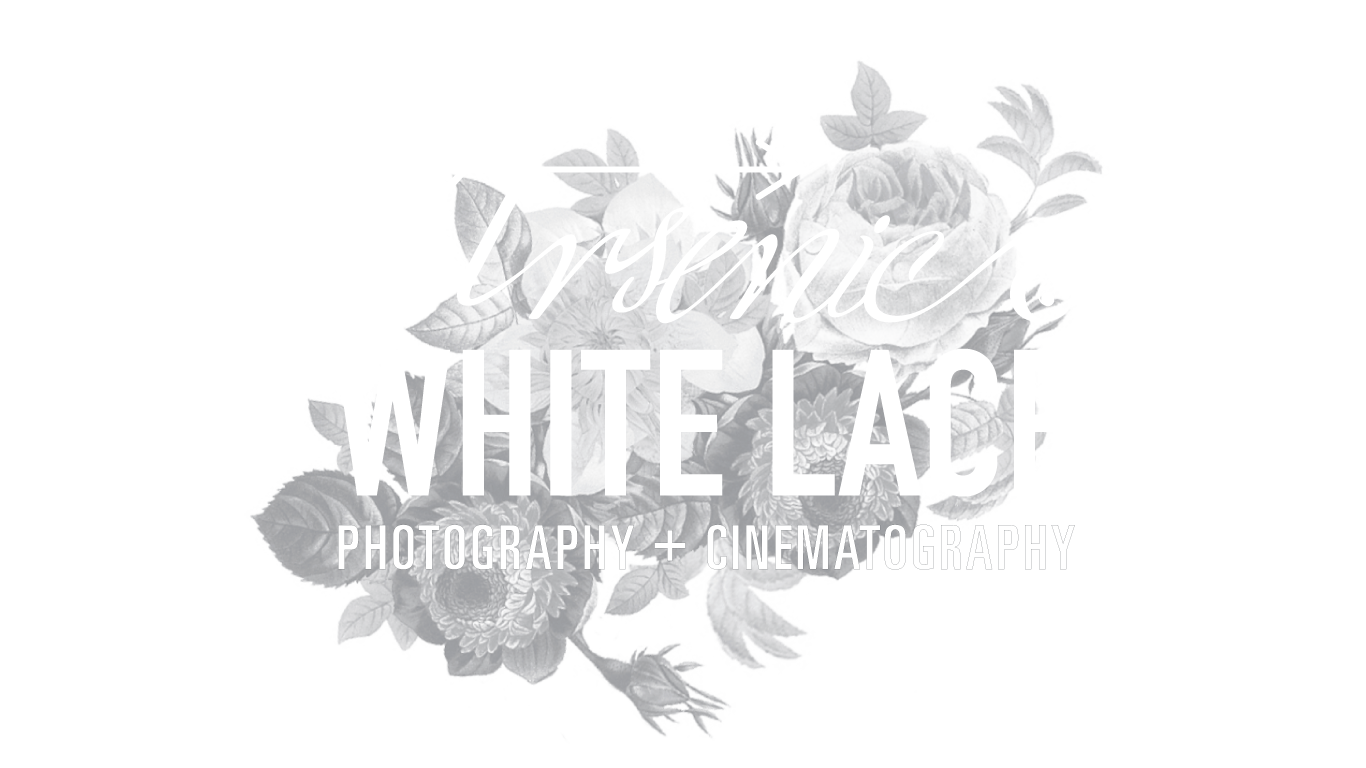 Arsenic and White Lace | Philadelphia Wedding Photography and Cinematography